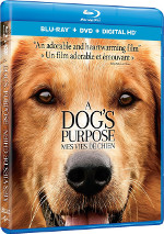 A Dog's Purpose (Mes vies de chien)
