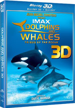 Dolphins & Whales 3D